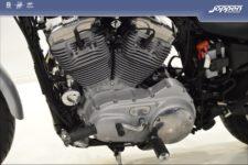 Harley-Davidson® XL883C 2007 zilver - Custom